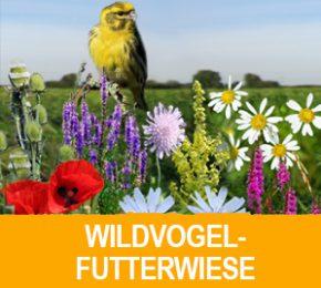 wildvogelfutterwiese_pro